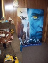 Double Sided Avatar Original Movie House Poster in Camp Lejeune, North Carolina